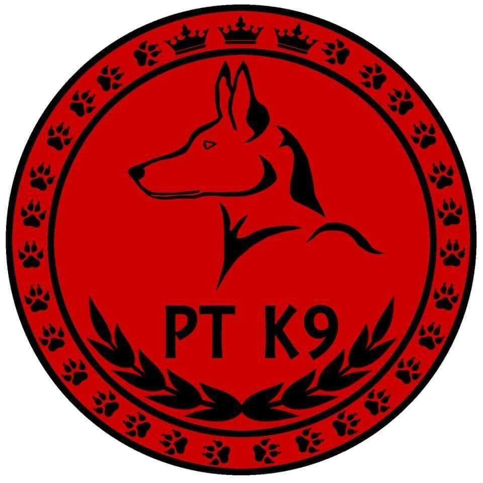 Work2gethers märke för PT hund
